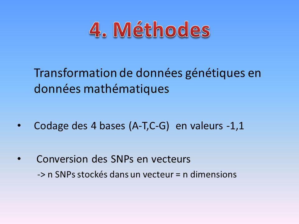 Transformation de données génétiques en données mathématiques Codage des 4 bases (A-T,C-G) en valeurs -1,1 Conversion des SNPs en vecteurs -> n SNPs s