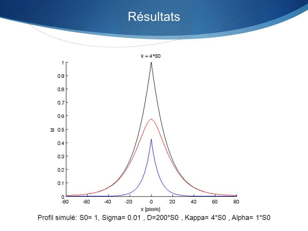 Résultats Profil simulé: S0= 1, Sigma= 0.01, D=200*S0, Kappa= 4*S0, Alpha= 1*S0