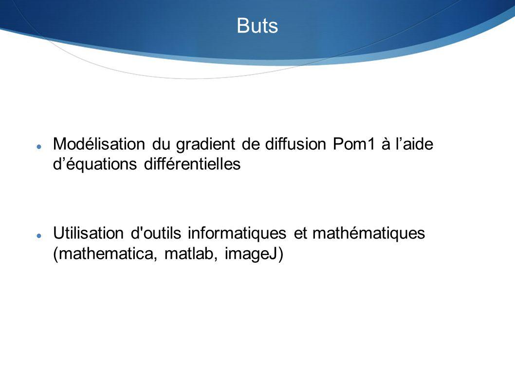 Buts Modélisation du gradient de diffusion Pom1 à laide déquations différentielles Utilisation d'outils informatiques et mathématiques (mathematica, m