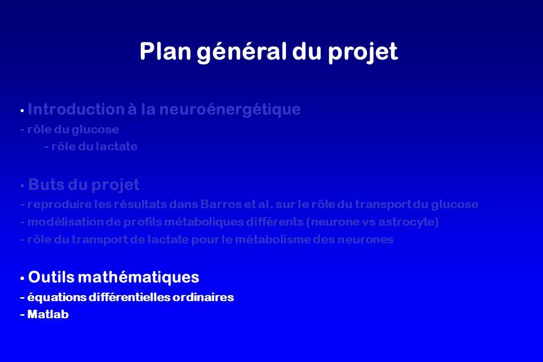 Plan général du projet Introduction à la neuroénergétique - rôle du glucose - rôle du lactate Buts du projet - reproduire les résultats dans Barros et