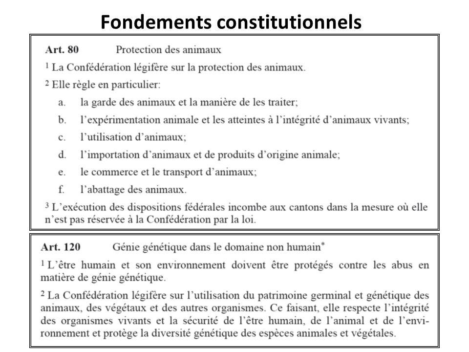 Fondements constitutionnels