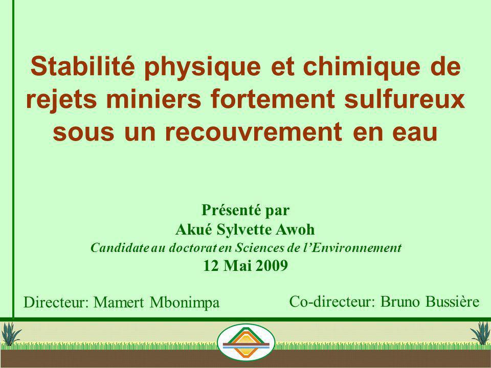 Stabilité physique et chimique de rejets miniers fortement sulfureux sous un recouvrement en eau Directeur: Mamert Mbonimpa Co-directeur: Bruno Bussiè
