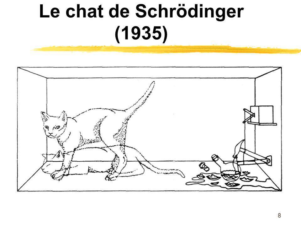 88 Le chat de Schrödinger (1935)