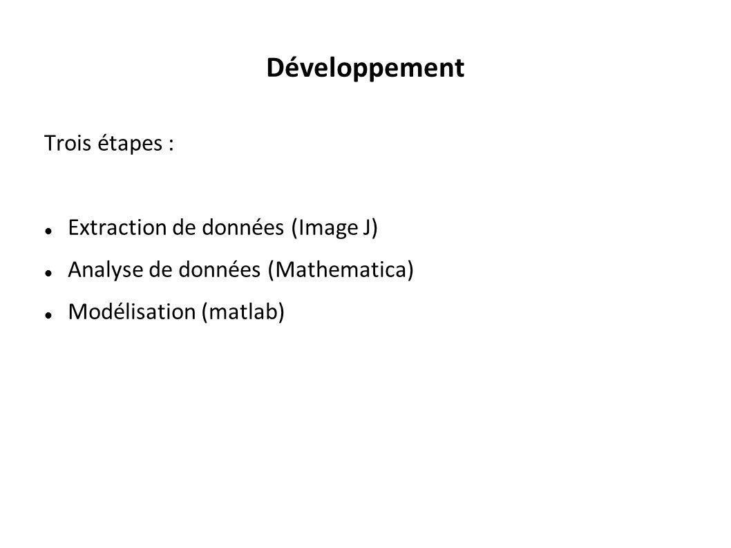 Développement Trois étapes : Extraction de données (Image J) Analyse de données (Mathematica) Modélisation (matlab)