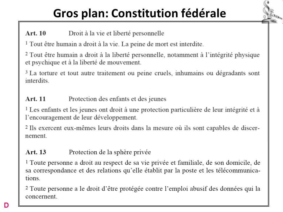 Gros plan: Constitution fédérale D