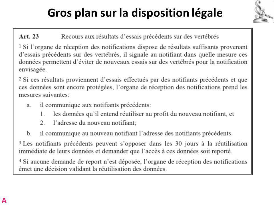 Gros plan sur la disposition légale A