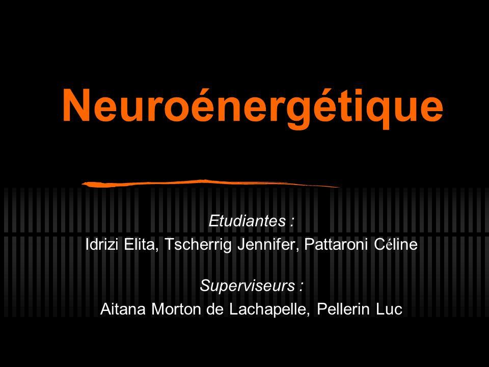 Neuroénergétique Etudiantes : Idrizi Elita, Tscherrig Jennifer, Pattaroni C é line Superviseurs : Aitana Morton de Lachapelle, Pellerin Luc