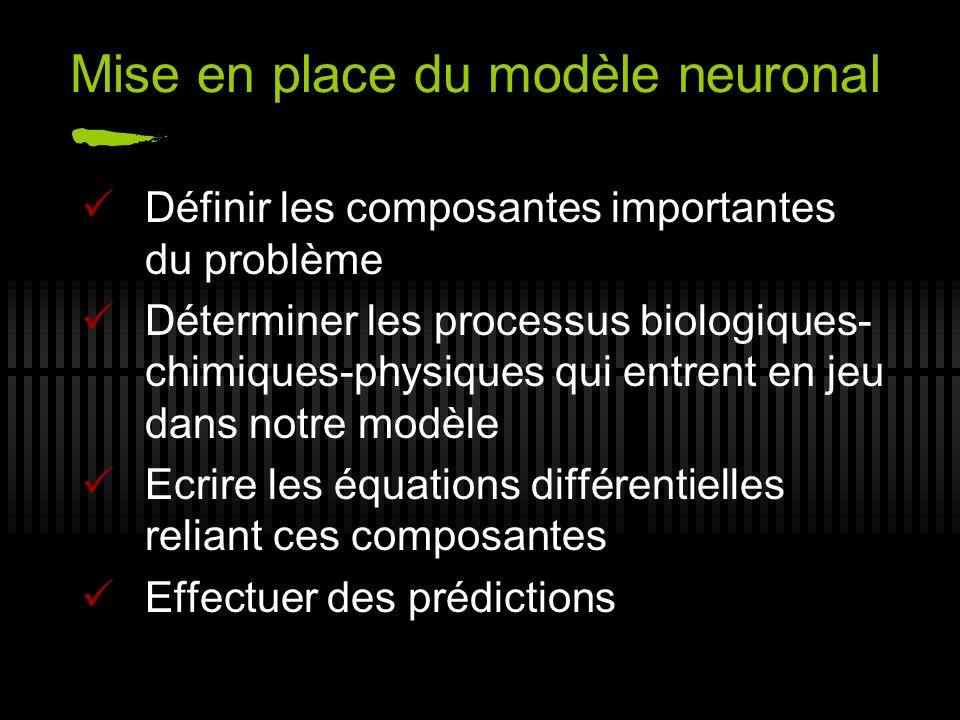 Mise en place du modèle neuronal Définir les composantes importantes du problème Déterminer les processus biologiques- chimiques-physiques qui entrent