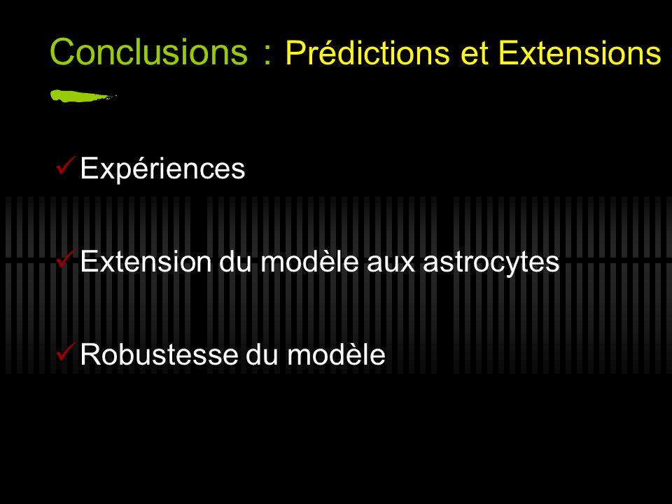 Conclusions : Expériences Extension du modèle aux astrocytes Robustesse du modèle Prédictions et Extensions
