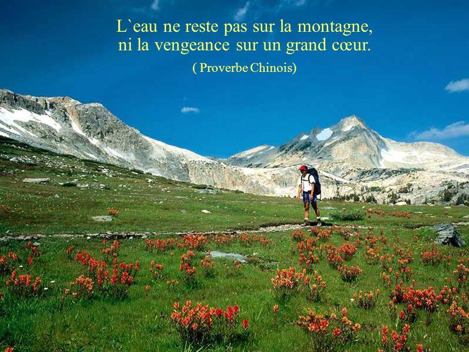 Qui veut gravir une montagne commence par le bas. ( Proverbe Chinois ) Cliquez