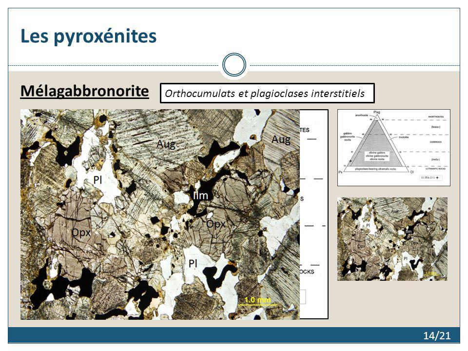 Les pyroxénites 14/21 Mélagabbronorite Orthocumulats et plagioclases interstitiels