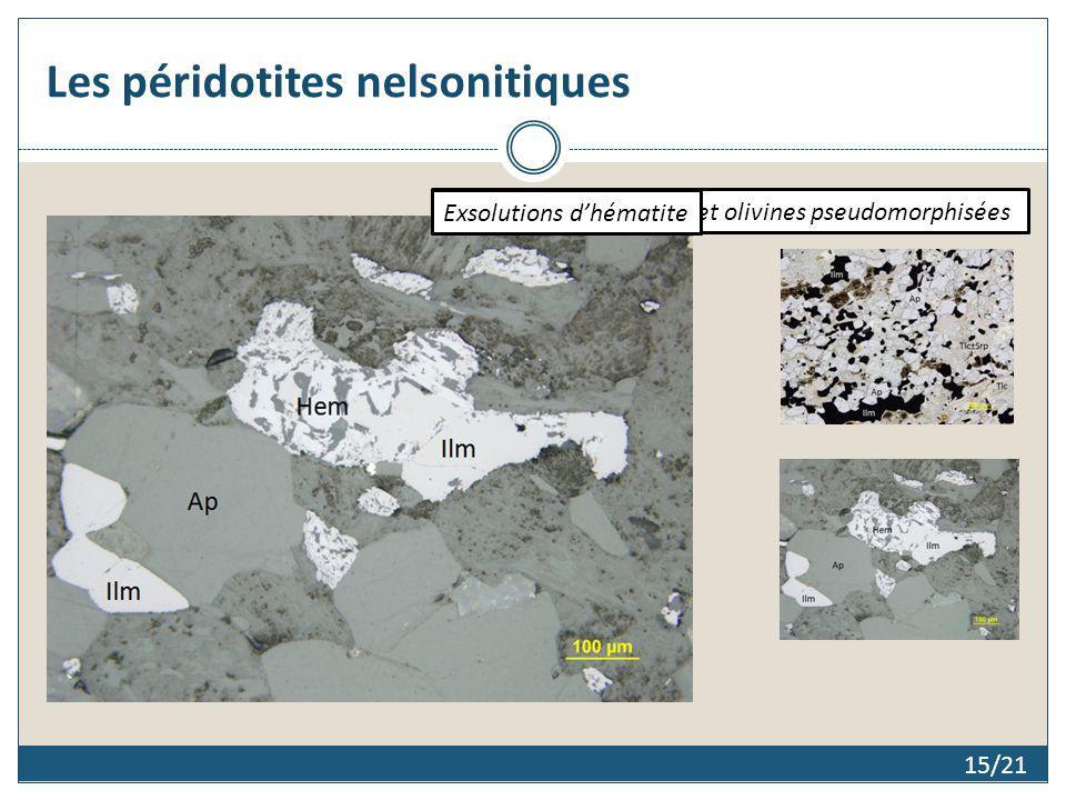 Les péridotites nelsonitiques 15/21 Texture granoblastique et olivines pseudomorphisées Exsolutions dhématite