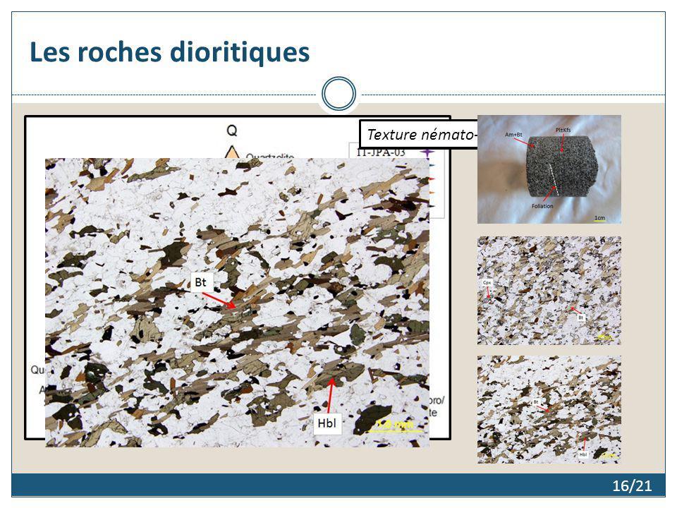 Les roches dioritiques 16/21 Monzodiorite et diorite à quartz Texture lépidoblastique Texture némato-lépidoblastique