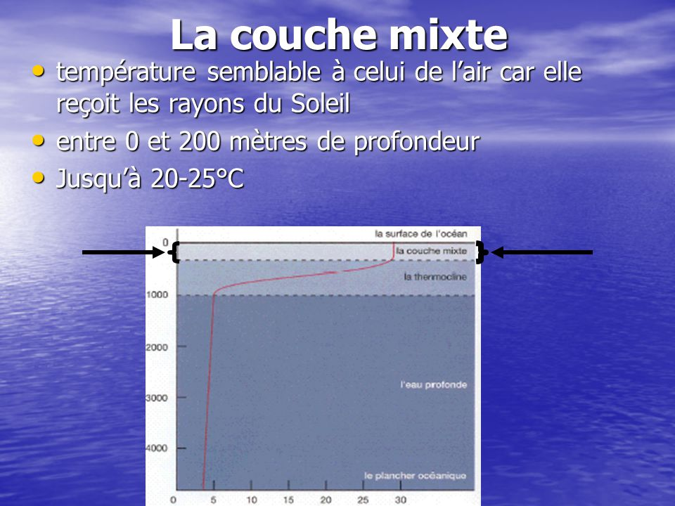 La thermocline Entre 200m et 1000m de profondeur Entre 200m et 1000m de profondeur Température peut baisser de 20°C à 5°C Température peut baisser de 20°C à 5°C
