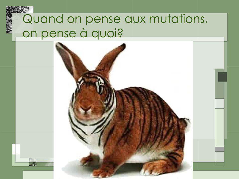 Quand on pense aux mutations, on pense à quoi?