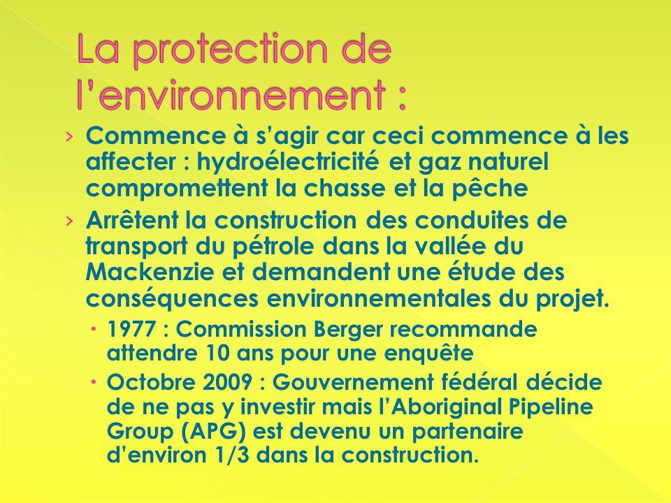 Commence à sagir car ceci commence à les affecter : hydroélectricité et gaz naturel compromettent la chasse et la pêche Arrêtent la construction des conduites de transport du pétrole dans la vallée du Mackenzie et demandent une étude des conséquences environnementales du projet.