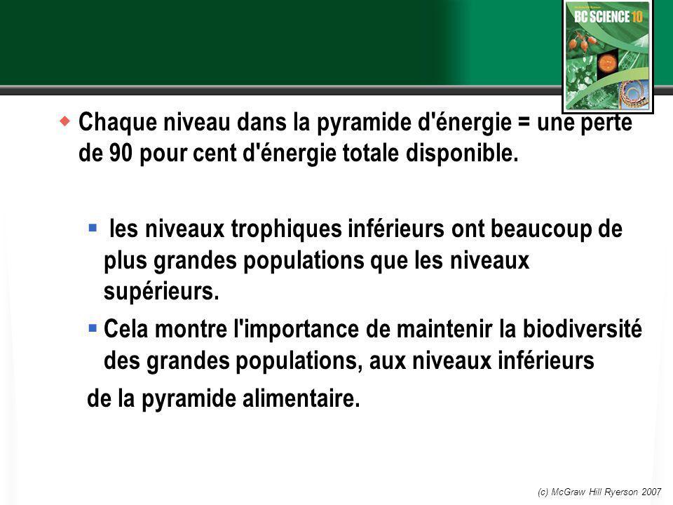 (c) McGraw Hill Ryerson 2007 Chaque niveau dans la pyramide d'énergie = une perte de 90 pour cent d'énergie totale disponible. les niveaux trophiques