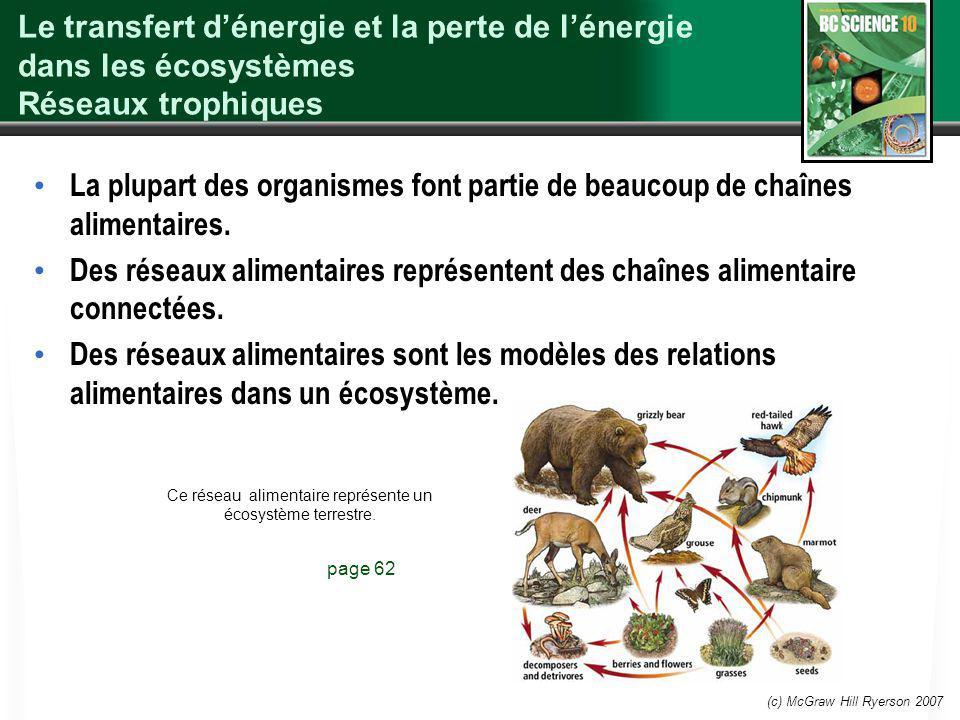 (c) McGraw Hill Ryerson 2007 Le transfert dénergie et la perte de lénergie dans les écosystèmes Réseaux trophiques La plupart des organismes font part