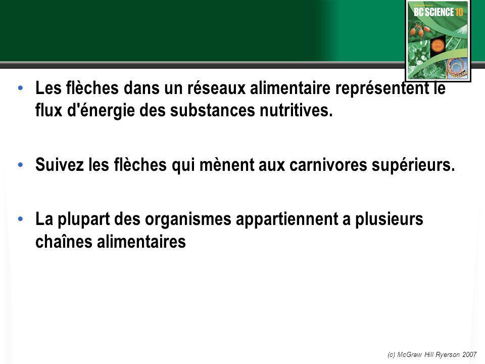 (c) McGraw Hill Ryerson 2007 Les flèches dans un réseaux alimentaire représentent le flux d'énergie des substances nutritives. Suivez les flèches qui