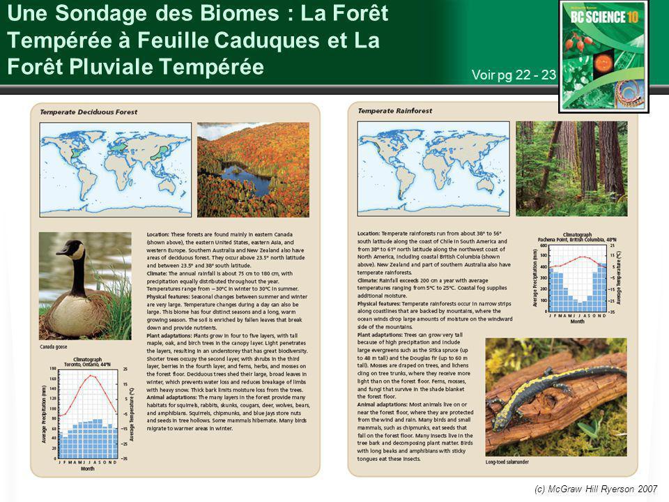 (c) McGraw Hill Ryerson 2007 Une Sondage des Biomes : La Forêt Tempérée à Feuille Caduques et La Forêt Pluviale Tempérée Voir pg 22 - 23