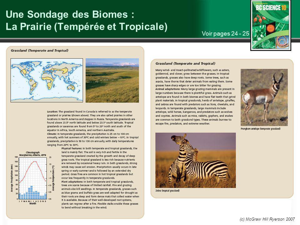 (c) McGraw Hill Ryerson 2007 Une Sondage des Biomes : La Prairie (Tempérée et Tropicale) Voir pages 24 - 25