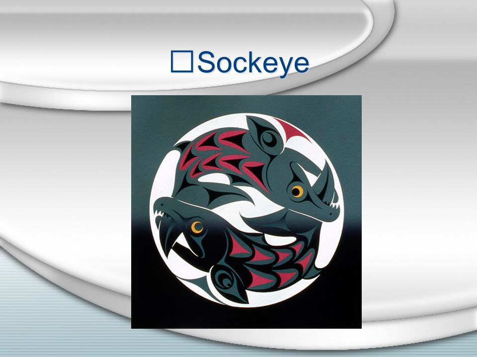 Sockeye