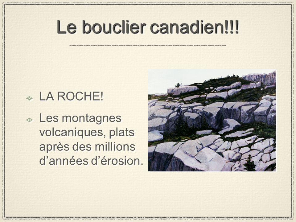 Le bouclier canadien!!.LA ROCHE.