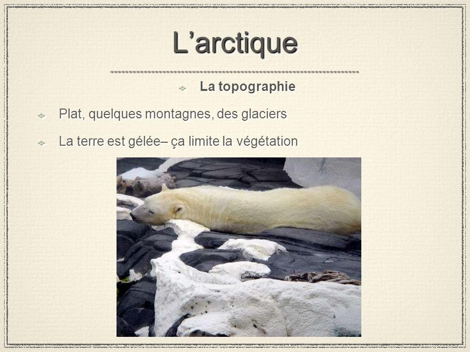 LarctiqueLarctique La topographie Plat, quelques montagnes, des glaciers La terre est gélée– ça limite la végétation La topographie Plat, quelques montagnes, des glaciers La terre est gélée– ça limite la végétation