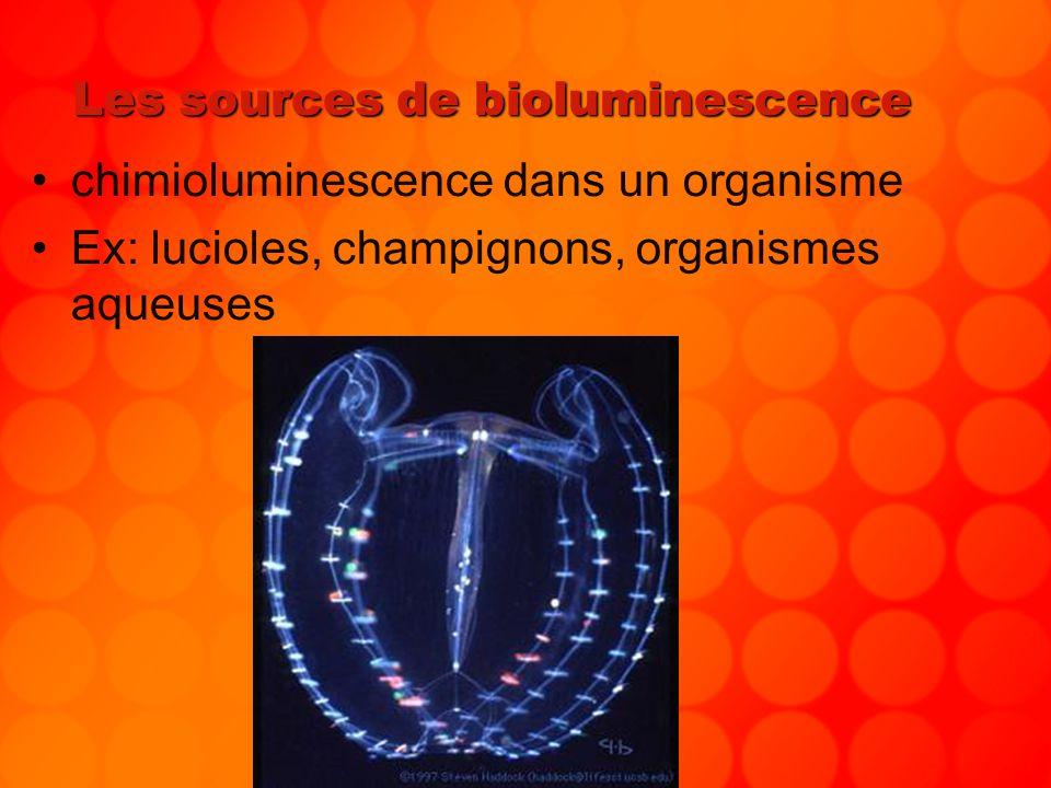 Les sources de bioluminescence chimioluminescence dans un organisme Ex: lucioles, champignons, organismes aqueuses