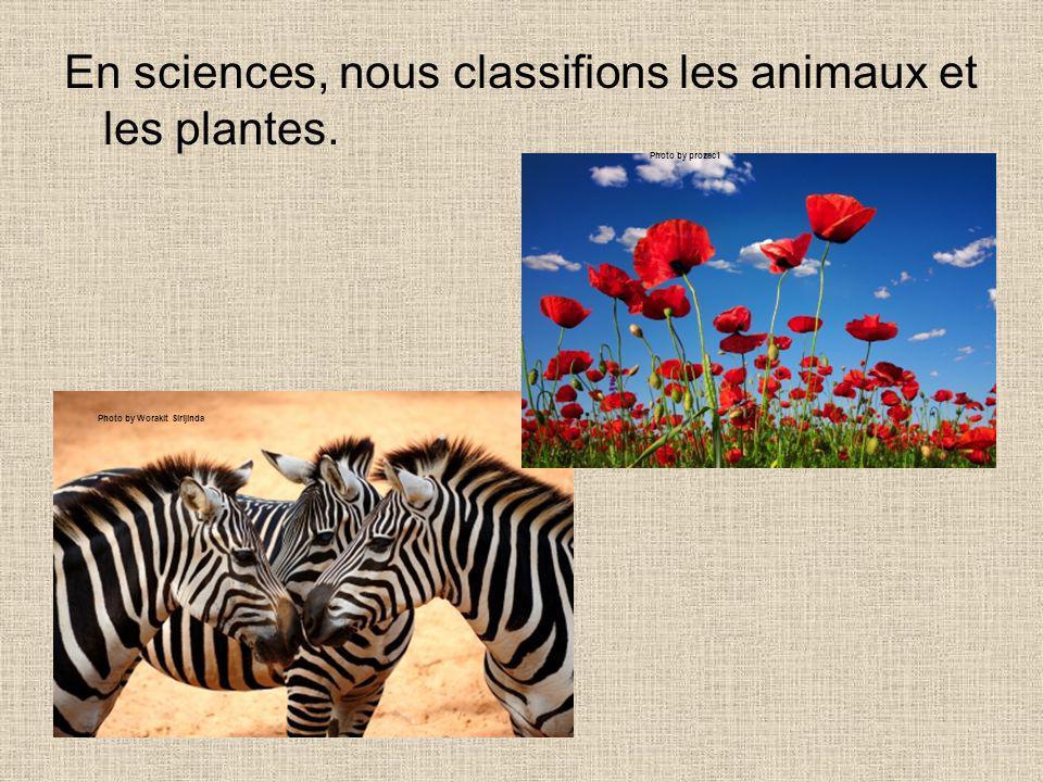 En sciences, nous classifions les animaux et les plantes.