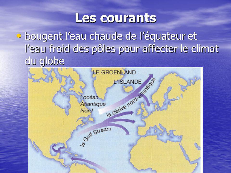 Les courants bougent leau chaude de léquateur et leau froid des pôles pour affecter le climat du globe bougent leau chaude de léquateur et leau froid