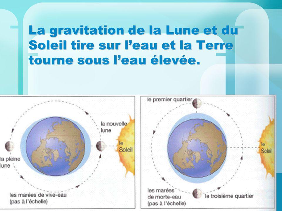 La gravitation de la Lune et du Soleil tire sur leau et la Terre tourne sous leau élevée.