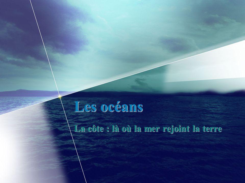 Les océans La côte : là où la mer rejoint la terre