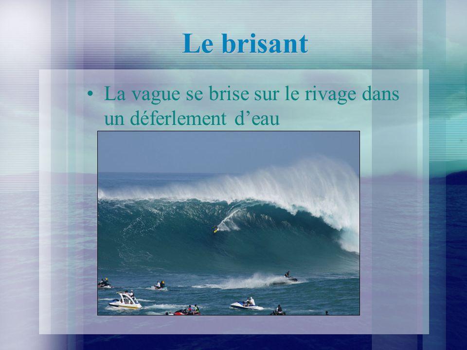 Le brisant La vague se brise sur le rivage dans un déferlement deau
