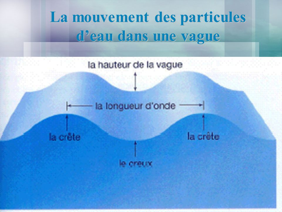 La mouvement des particules deau dans une vague