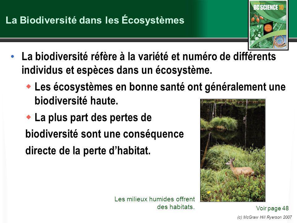(c) McGraw Hill Ryerson 2007 La Biodiversité dans les Écosystèmes La biodiversité réfère à la variété et numéro de différents individus et espèces dans un écosystème.