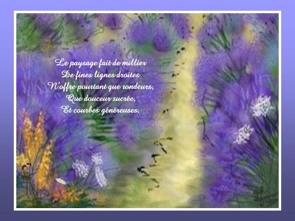 Tout est bourdonnements discrets, Les abeilles sactivent de tige en tige, Visitant chaque fleur minuscule, Alors que le bourdon paresseux Contente sa