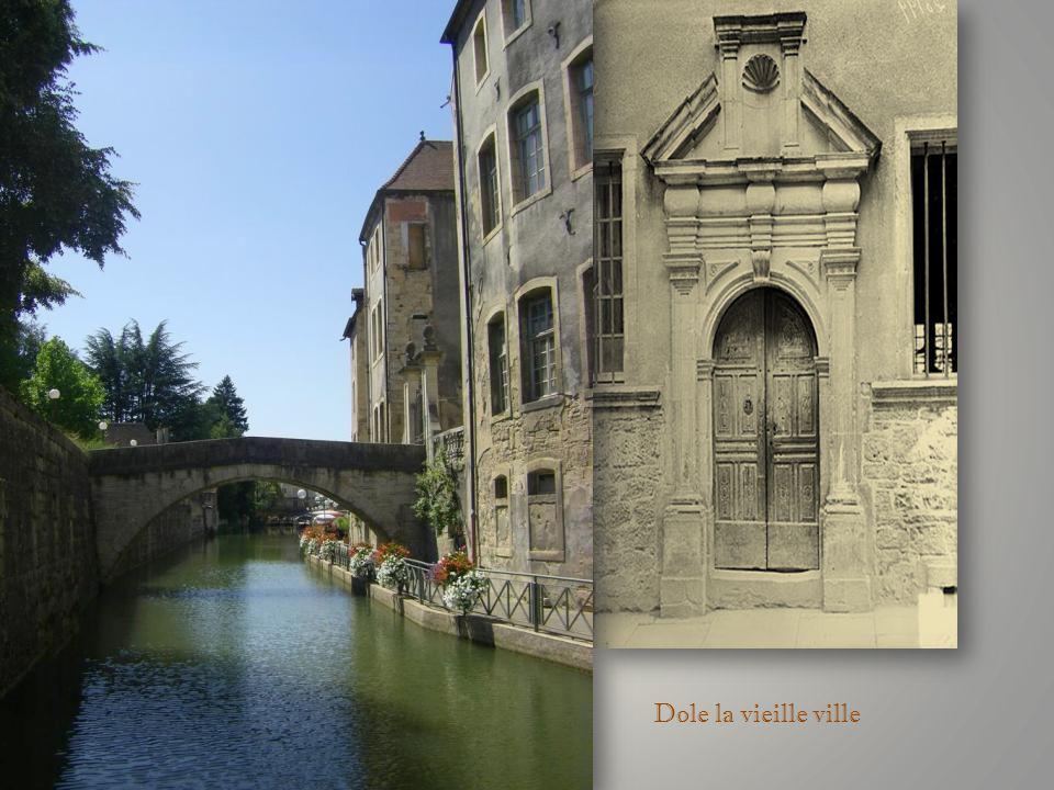 Louis Pasteur : peinture acrylique et encre de chine Musée des Beaux Arts de Dole