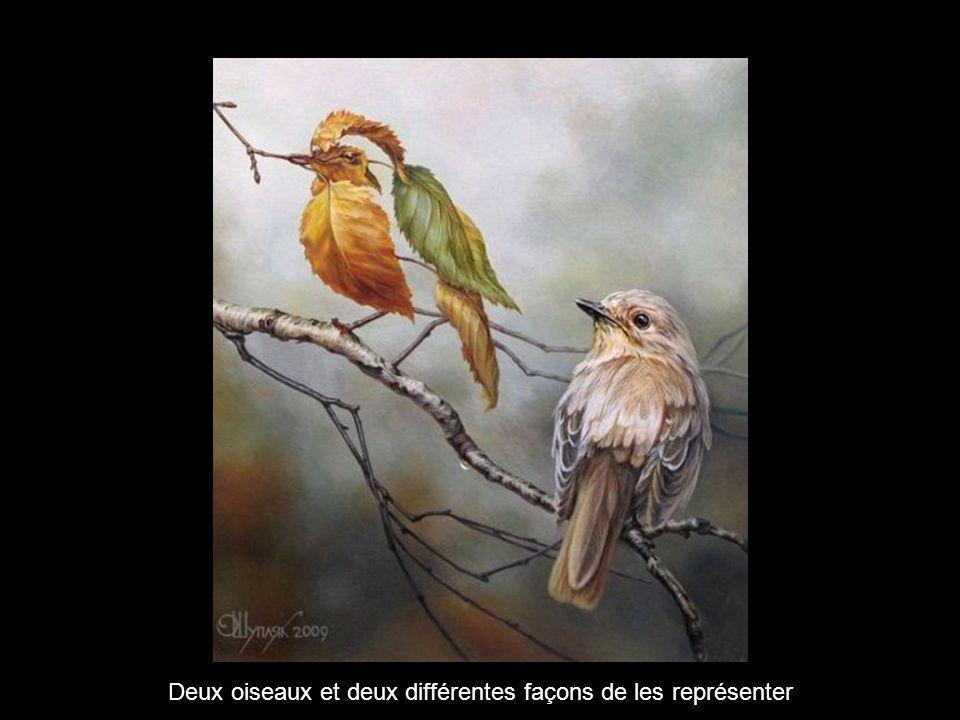 Deux oiseaux et deux différentes façons de les représenter