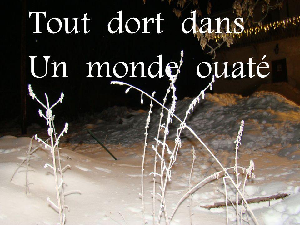 Création Dominique Fournerat Texte de Marguerite Magnin Musique : Unchained Melody Images de ma photothèque Janvier 2011
