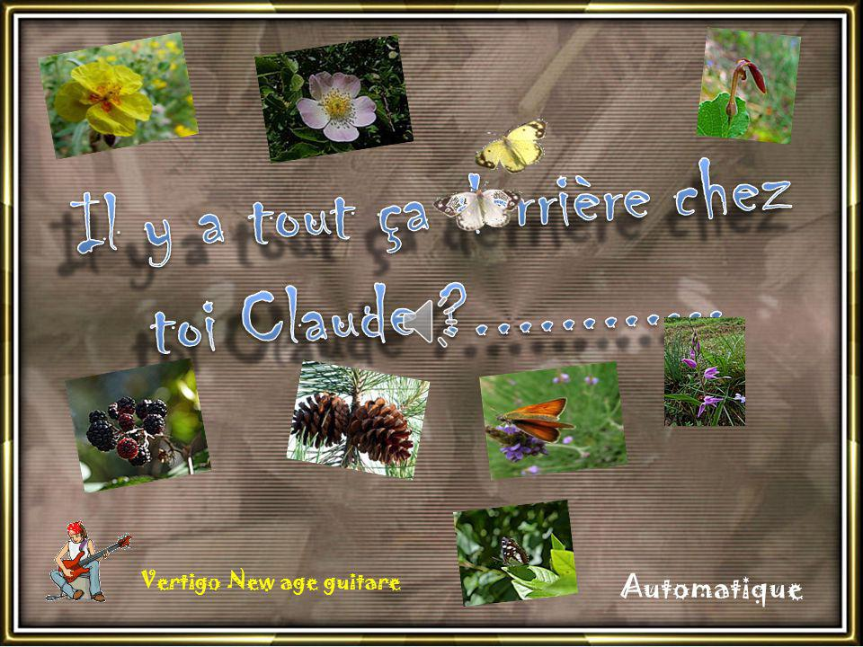 Maintenant cest moi qui attends mon Ami !! Allez Claude on est arrivé !! www.photorandromesud.com