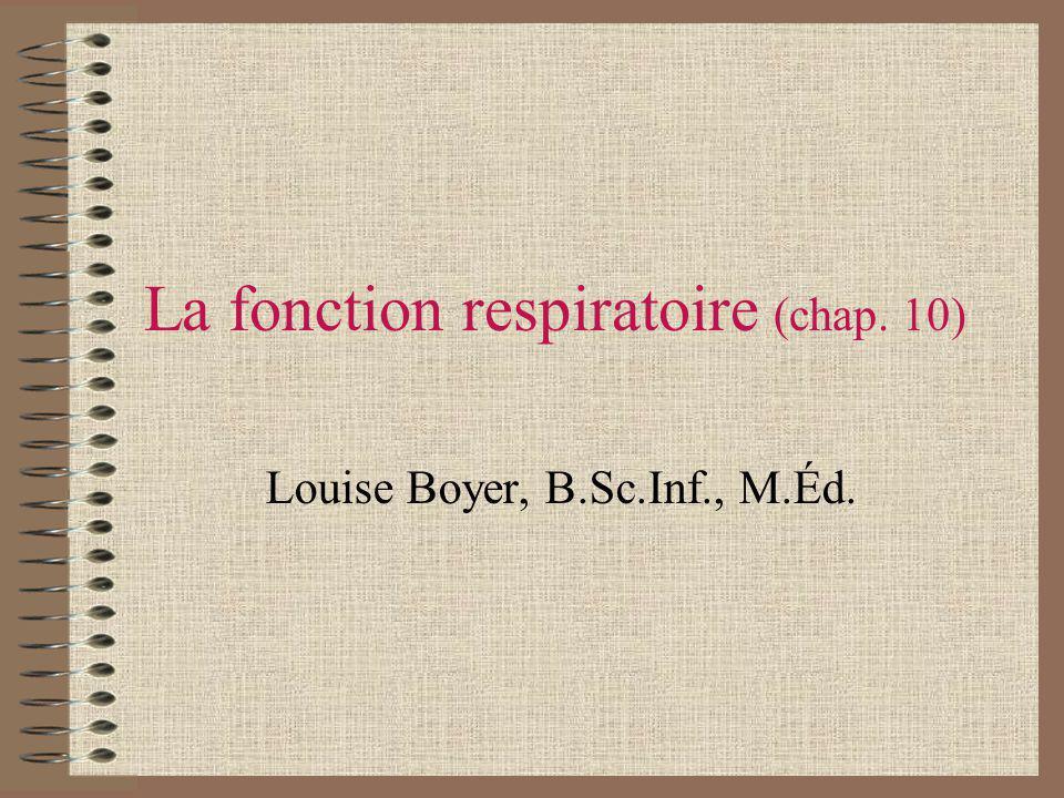 La fonction respiratoire (chap. 10) Louise Boyer, B.Sc.Inf., M.Éd.