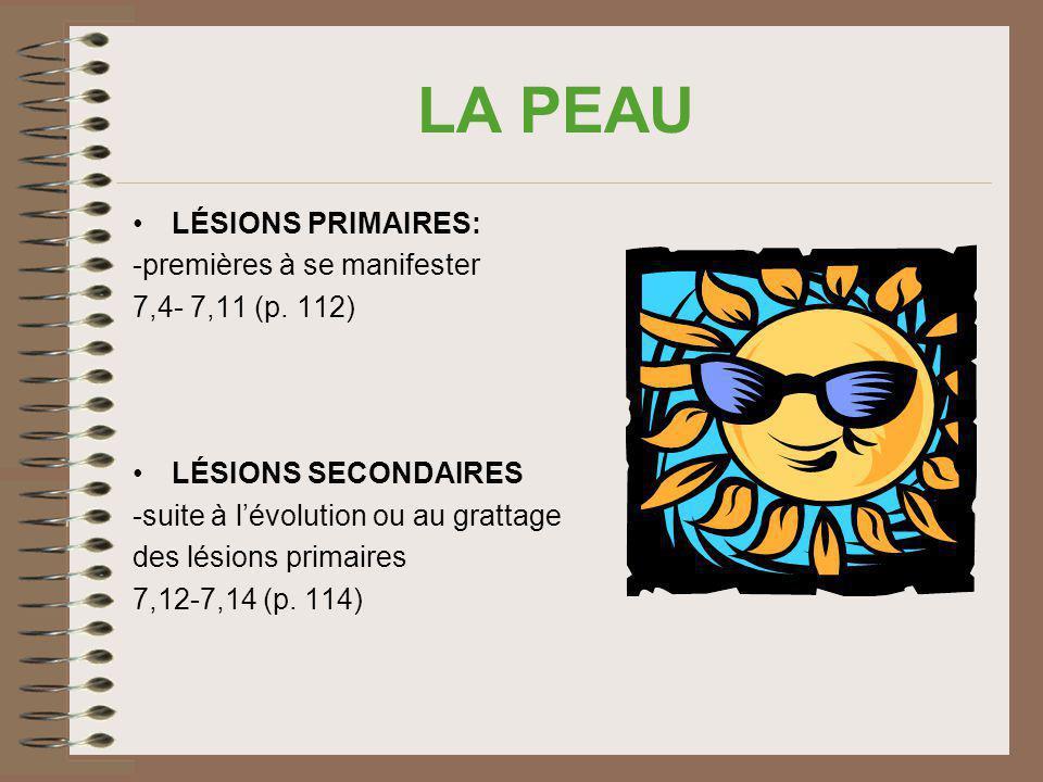 LA PEAU LÉSIONS PRIMAIRES: -premières à se manifester 7,4- 7,11 (p. 112) LÉSIONS SECONDAIRES -suite à lévolution ou au grattage des lésions primaires