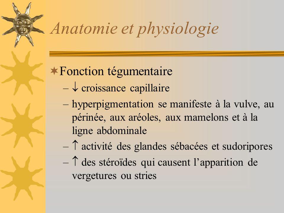 Anatomie et physiologie Fonction tégumentaire – croissance capillaire –hyperpigmentation se manifeste à la vulve, au périnée, aux aréoles, aux mamelon