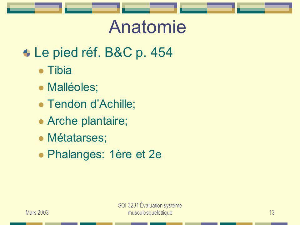 Mars 2003 SOI 3231 Évaluation système musculosquelettique13 Anatomie Le pied réf. B&C p. 454 Tibia Malléoles; Tendon dAchille; Arche plantaire; Métata