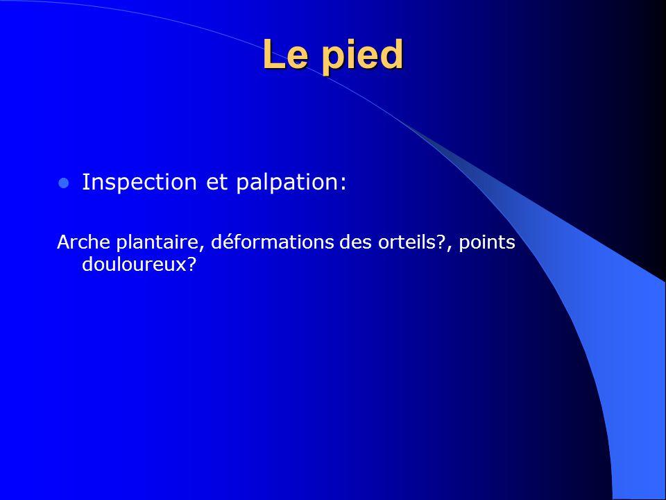 Le pied Inspection et palpation: Arche plantaire, déformations des orteils?, points douloureux?