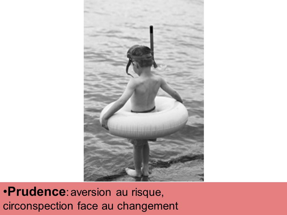 Prudence : aversion au risque, circonspection face au changement
