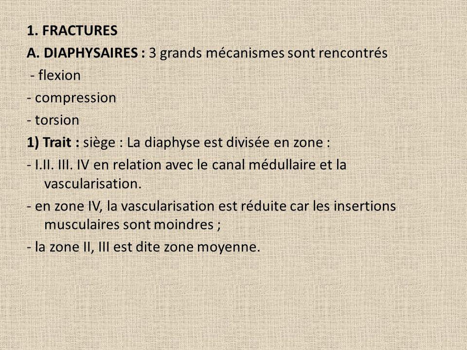 1. FRACTURES A. DIAPHYSAIRES : 3 grands mécanismes sont rencontrés - flexion - compression - torsion 1) Trait : siège : La diaphyse est divisée en zon