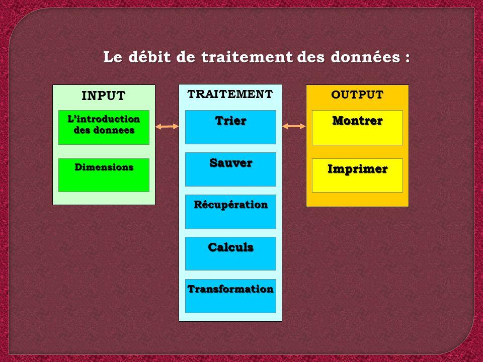 Le débit de traitement des données : INPUT Lintroduction des donnees Dimensions TRAITEMENT OUTPUT Trier Sauver Récupération Calculs Transformation Mon