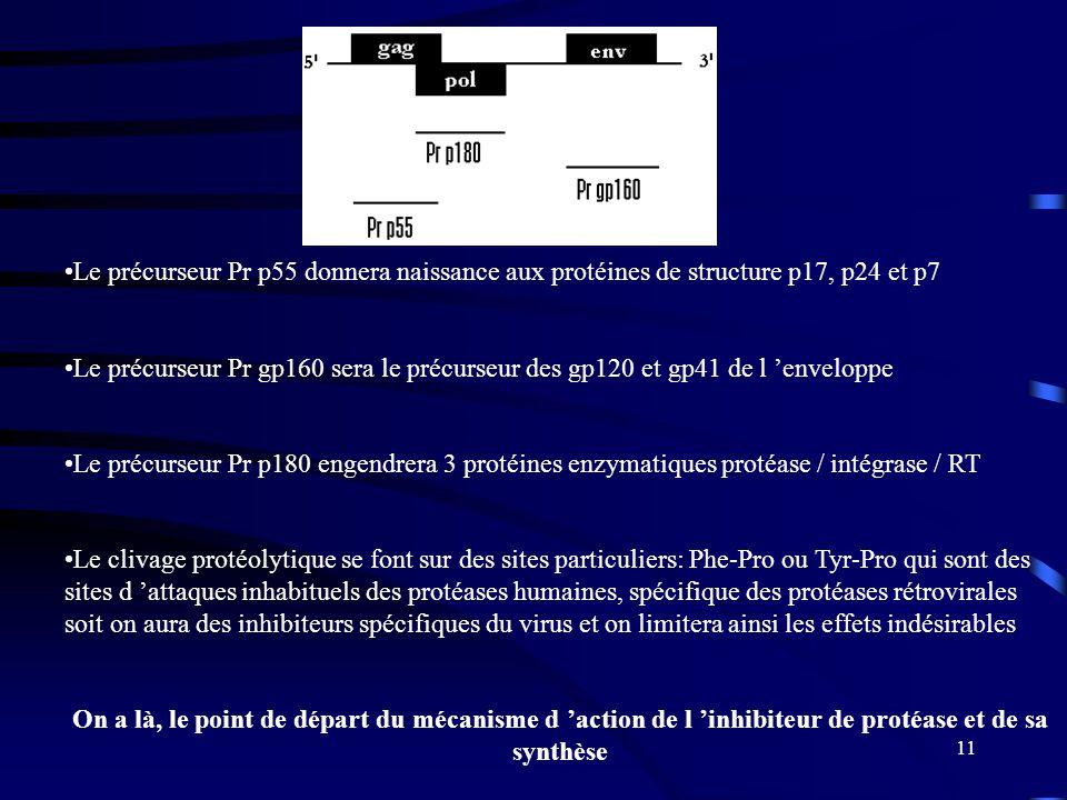 11 Le précurseur Pr p55 donnera naissance aux protéines de structure p17, p24 et p7 Le précurseur Pr gp160 sera le précurseur des gp120 et gp41 de l enveloppe Le précurseur Pr p180 engendrera 3 protéines enzymatiques protéase / intégrase / RT Le clivage protéolytique se font sur des sites particuliers: Phe-Pro ou Tyr-Pro qui sont des sites d attaques inhabituels des protéases humaines, spécifique des protéases rétrovirales soit on aura des inhibiteurs spécifiques du virus et on limitera ainsi les effets indésirables On a là, le point de départ du mécanisme d action de l inhibiteur de protéase et de sa synthèse